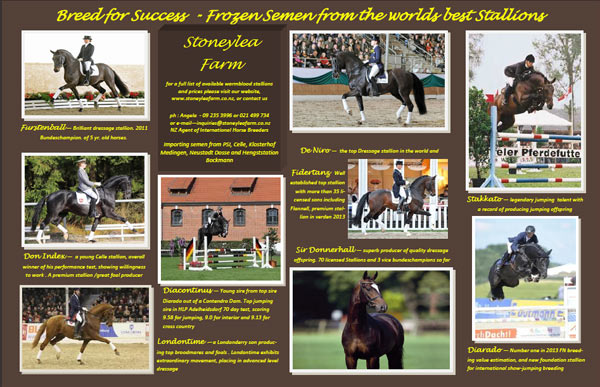Stallions available from Stoneylea Farm – 2014