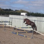 Parkrige Donnamour in Mare Performance test
