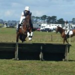 Hanoverians out and about in Horse Trials