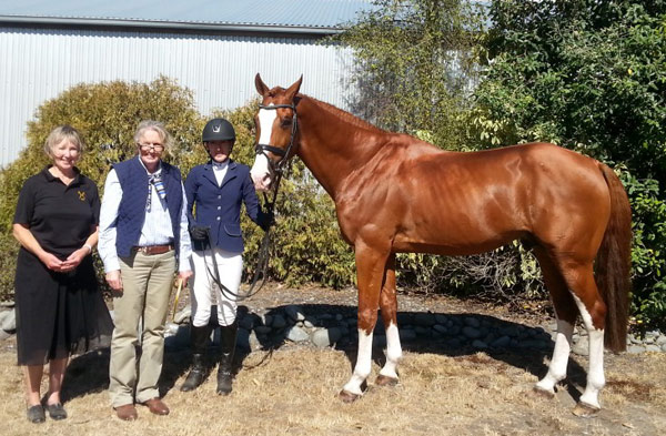Eurosport Heartbreaker pictured with rider Claudia Hay and the inspection commission of Hartmut Wilking from the Hanoverian Verband in Verden Germany, Angela Smith and Robin Potter from Auckland.