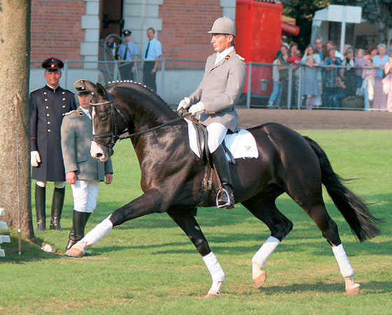 Rascalino  during his Stallion performance test.