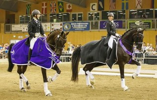 National Dressage Championships – The Hanoverians