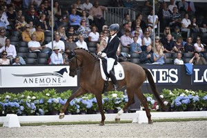 German rider Beatrice Buchwald and the Rheinlander mare Victoria's Secret by Vitalis / Fidermark won the world championship for 5-year-old horses in dressage in Ermelo in 2016.
