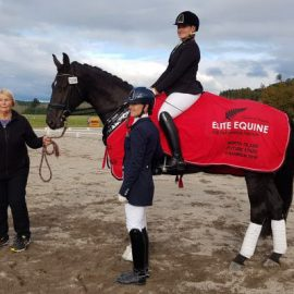 Fanfare MH – Champion Young Dressage Horse 2018