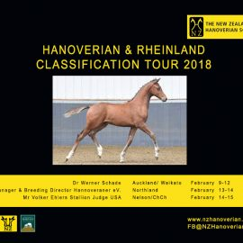 Mares, Foals and Stallions 2019  – Join us!