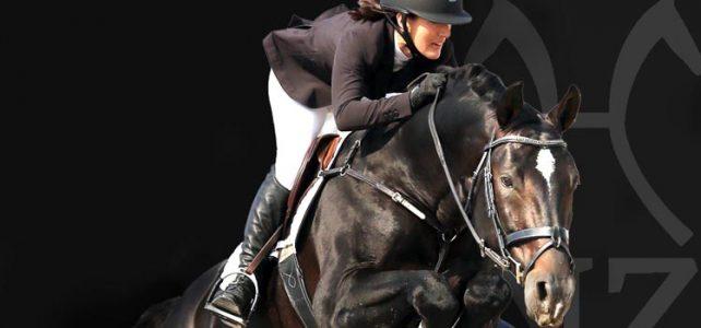 Stallion Licensing Opportunity