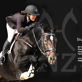 Stallion Licensing in NZ 2019