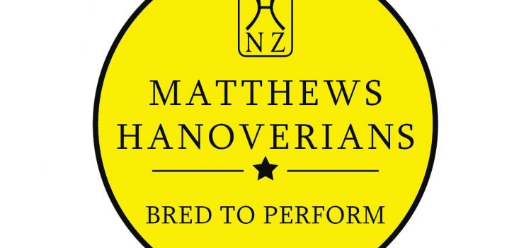 Matthews Hanoverians Dressage Sash Awards – progress report