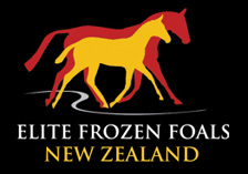 Elite Frozen Foals